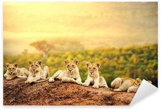 Sticker - Pixerstick Lion cubs waiting together.