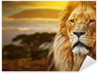 Sticker - Pixerstick Lion portrait on savanna background and Mount Kilimanjaro