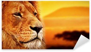 Sticker Pixerstick Lion portrait sur la savane. Mont Kilimandjaro au coucher du soleil. Safari