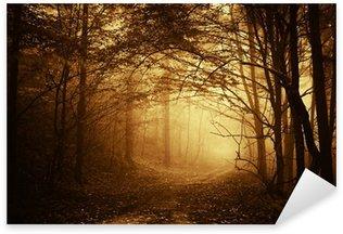 Sticker Pixerstick Lumière chaude qui tombe sur une route dans une forêt sombre à l'automne
