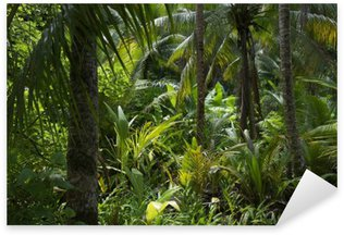 Sticker - Pixerstick Lush Tropical Jungle Rainforest Background