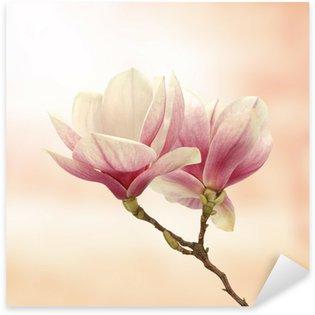 magnolia Sticker - Pixerstick