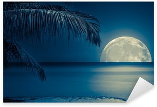 Sticker - Pixerstick Moon reflected on the water of a tropical beach
