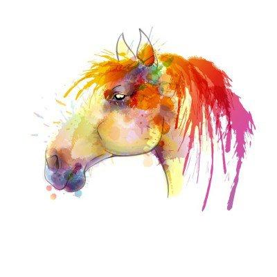 Sticker Mural Peinture à l'aquarelle Tête de cheval