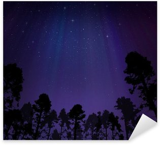 Night sky with northern lights Sticker - Pixerstick