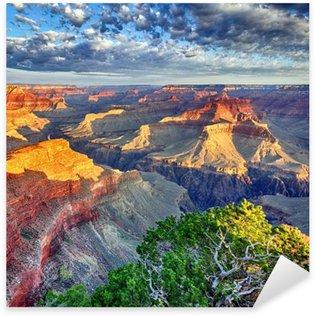 Pixerstick Sticker Ochtendlicht in het Grand Canyon