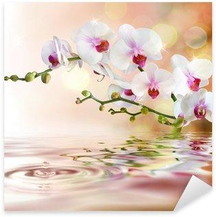 Sticker Pixerstick Orchidées blanches sur l'eau avec la baisse