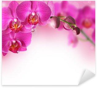 Sticker Pixerstick Orchidées frontière du design, avec copie espace