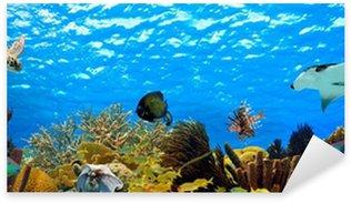 Sticker Pixerstick Panorama sous-marine d'un récif tropical dans les Caraïbes