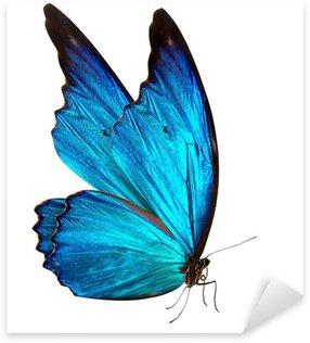 Sticker Pixerstick Papillon macro fond