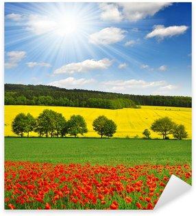 Sticker Pixerstick Paysage de printemps avec le champ de coquelicot rouge dans la République tchèque