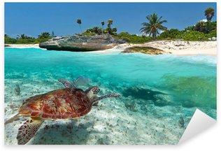 Sticker Pixerstick Paysage mer des Caraïbes avec la tortue verte au Mexique