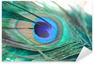 peacock feather Sticker - Pixerstick