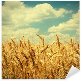 Sticker Pixerstick Photo vintage d'épis de blé sur le terrain