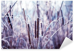 Plants covered with hoarfrost Sticker - Pixerstick