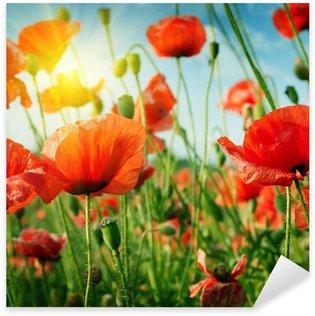 poppies field in rays sun Sticker - Pixerstick