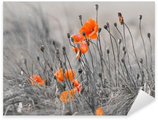 Pixerstick for All Surfaces poppies