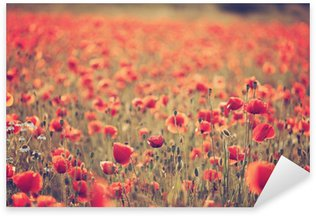 Poppy field Sticker - Pixerstick
