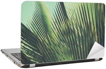 Sticker pour Ordinateur Portable Abstract vintage background tropical. Feuilles de palmier dans la lumière du soleil.