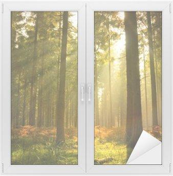 Sticker pour Vitres et Fenêtres Magnifique forêt