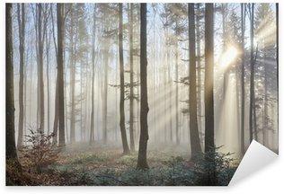 Sticker Pixerstick Rayons de soleil à travers la forêt brumeuse