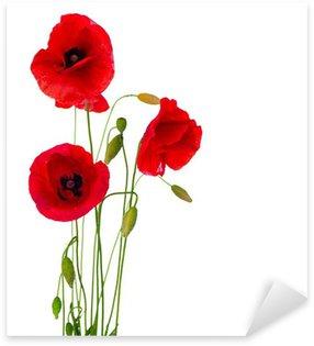 Pixerstick Sticker Rode Papaver bloem geïsoleerd op een witte achtergrond