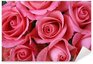 Pixerstick Sticker Roses