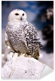 Sticker - Pixerstick Snowy Owl