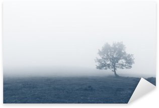 solitary tree with fog Sticker - Pixerstick