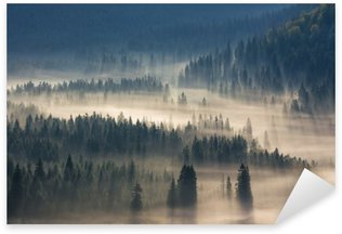 Pixerstick Sticker Sparren op een weide langs de wil om naaldbos in mistige bergen