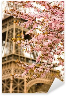 Sticker - Pixerstick Spring in Paris. Bloomy cherry tree and the Eiffel Tower