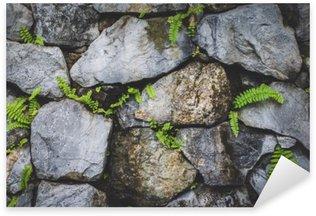 Pixerstick Sticker Stenen muur met planten natuur