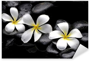 Sticker - Pixerstick Still life with frangipani and black pebbles