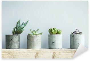 Sticker Pixerstick Succulentes en pot béton bricolage. Chambre scandinave décoration intérieure