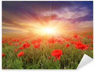 Sticker - Pixerstick sunset over poppy field