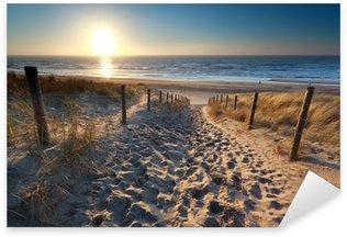sunshine over path to beach in North sea Sticker - Pixerstick