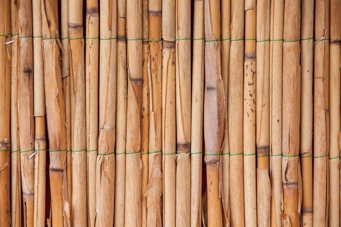 Awesome Bambou Stickersjaponais Images - lalawgroup.us - lalawgroup.us