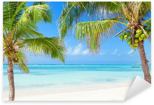Tropical beach with coconut palms and transparent waters Sticker - Pixerstick
