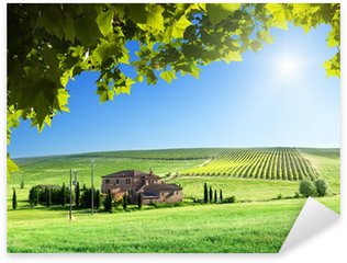 Pixerstick for All Surfaces Tuscany landscape with typical farm house