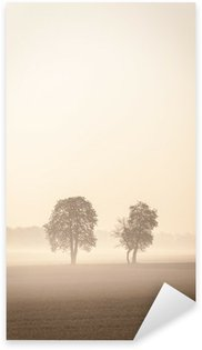 Pixerstick for All Surfaces Two lonley trees in the mist