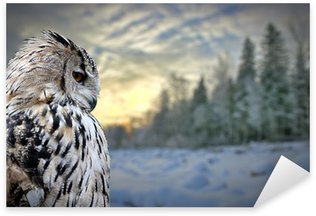 Pixerstick Sticker Uil op de winter bos achtergrond