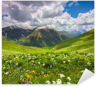 Pixerstick Sticker Velden van bloemen in de bergen. Georgië, Svaneti.