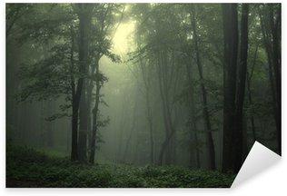 Sticker Pixerstick Vert forêt après la pluie
