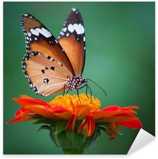 Pixerstick Sticker Vlinder op een bloem