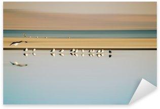 Pixerstick for All Surfaces Vogelschwarm in Reihe / Ein kleiner Vogelschwarm in Reihe stehender Möwen einer Brutkolonie am Saltonsee in Kalifornien.