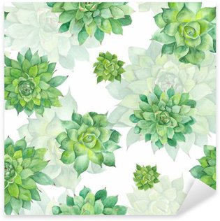 Watercolor Succulent Pattern on White Background Pixerstick Sticker