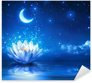 waterlily and moon in starry night - magic background Sticker - Pixerstick