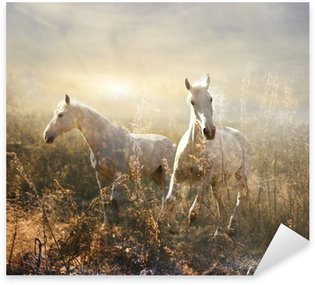 Sticker - Pixerstick white horse galloping on meadow
