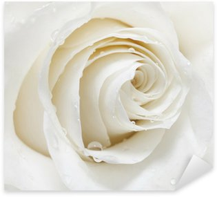 Pixerstick Sticker White Rose