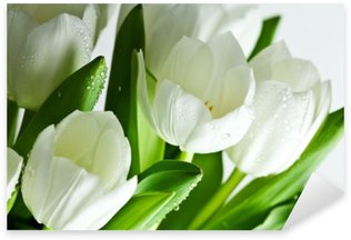 White Tulips Sticker - Pixerstick